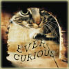 junipersky: (Ever Curious Kitty)