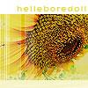 helleboredoll: (sunflower helleboredoll, Sunflower)