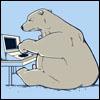 marcicatverse: (polar bear)