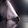 damselfish: (ballet)
