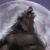 nation_monster: (Werewolf)