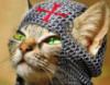 lena_malaa: (кот-тамплиер)