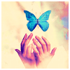 anam_cara: (butterfly)