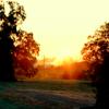 katharwen: (Supernatural sunset)