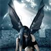 blackdecember8: (fairy)