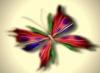 zelina: (butterfly)