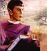 klangley56: (Spock)