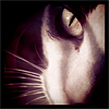 anenome: (maddie eyes)