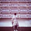 asari_scientist: WALL OF SCREENS WALL OF SCREENS WALL OF SCREENS (more dead to me than your dead mother)