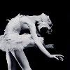 insideinsanityy: ([ballet] wendy whelan)