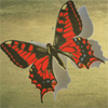 red_butterfly: A red butterfly on a sepia background. (Default)