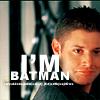 moon_llama: (batman)