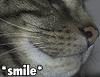 natf: (pixel-smile, smile)