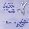 musesfool: tom mcrae lyrics icon (i was born in a summer storm)