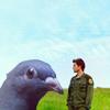skywardprodigal: lee adama and a pigeon at olduvai gorge (bsg-lee/pigeon olduvai)