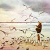nikoljja: (чайки)