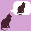 ext_12019: cat thinks about god (Default)