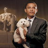 akemi42: (Obama Poodle)