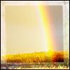 angryoldhag: A rainbow on a heathland (rainbow)