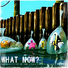 """wistfuljane: the gang in the fist tank from finding nemo after having escaped with the caption """"what now?"""" (what now)"""