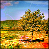 angryoldhag: Brightly coloured landscape picture (bright landscape)