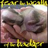 isidore13: FEAR THE WRATH OF THE BADGEEEEEEEER!!!! (Badger Wrath)