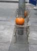 zirconium: photo of pumpkin on wire chair (pumpkin on chair)