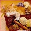 kirana: (cat yarn basket)