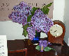 ext_29896: Lilacs in grandmother's vase on my piano (cat silliness)