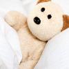 catwalksalone: (bear in bed)