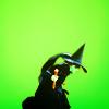 promethia_tenk: (witch)