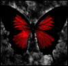 pryde_and_grit: (Crimson Butterfly)
