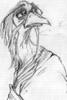 nomen_est_numen: (ruffled birdie)