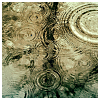 misqueue: rain drops making ripples (stock - rainy ripples)