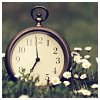 misqueue: a pocket watch sitting upright in the grass & small white wildflowers (stock - pocket watch)
