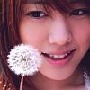 elyse: (saki fukuda: white flower)