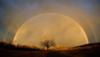 sir: Double Rainbow (pic#300644)