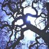 iambetadraconis: (Full Moon)
