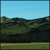 ext_110: A field and low mountain of the Porcupine Hills, Alberta. (Hills and dales)