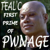 fignewton: (teal'c first prime pwnage)