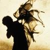 renatus: Tattered wings. (fragile)
