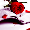 murderinghours: Blood, red roses, a book. (It was ment to be a tragedy)