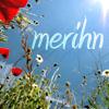 merihn: (username) (Default)
