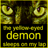 "lilacsigil: Cat, ""Yellow Eyed Demon"" (yellow eyed demon)"