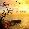 plumgirl: (FlyAway)