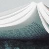wilderthan: ((Books) Open book)