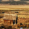 idontlikegravy: (cabin)