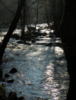 starfishyeti: River (The Sedelle)