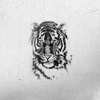 unwritten_icons: (Tiger)