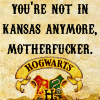 "strina: text with hogwarts coat-of-arms caption ""you're not in kansas anymore, motherfucker."" (hogwarts motherfucker)"